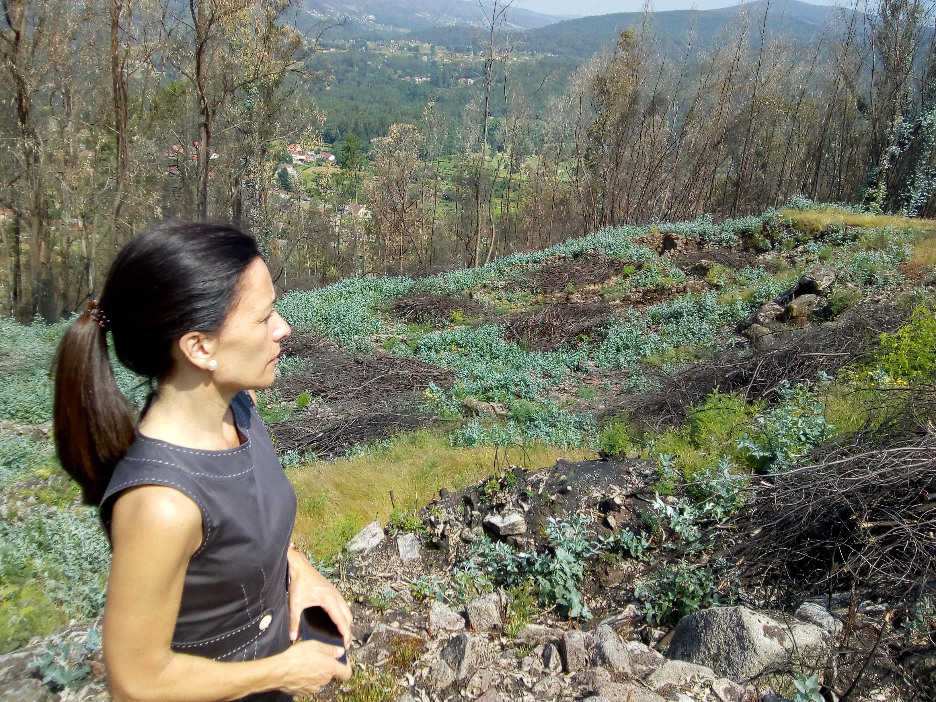 Un Recurso Turístico Tan Importante Para Ponteareas Como é O Castro De Troña Presenta Un Estado De Abandono Total