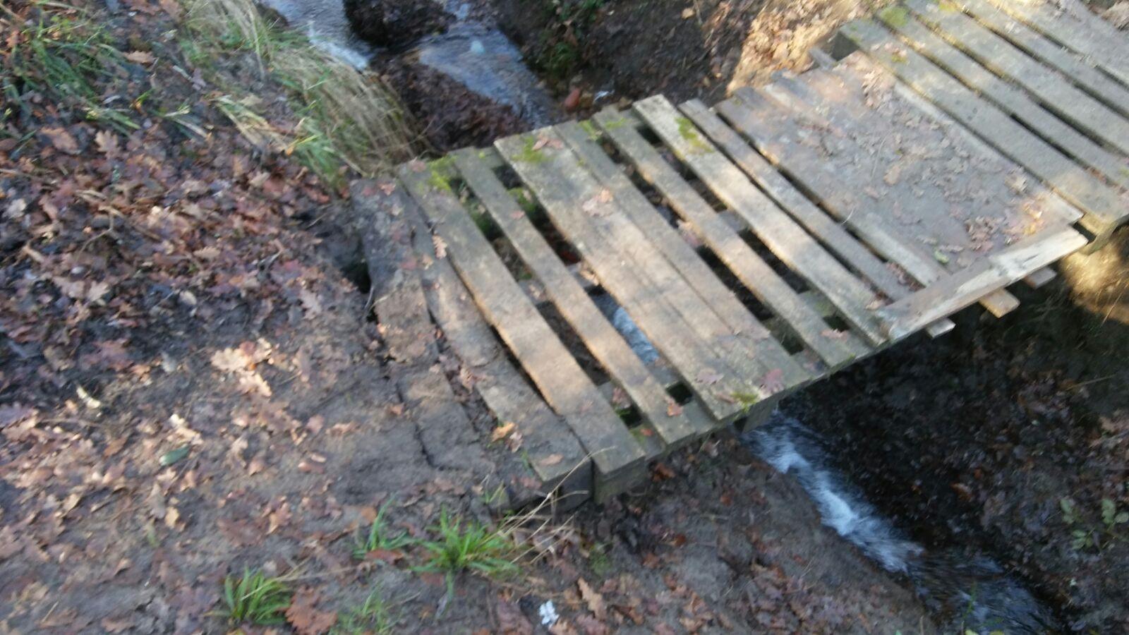 Denunciamos O Absoluto Abandono Que Presenta O Paseo Fluvial Do Río Tea